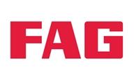 fag-ozsayin